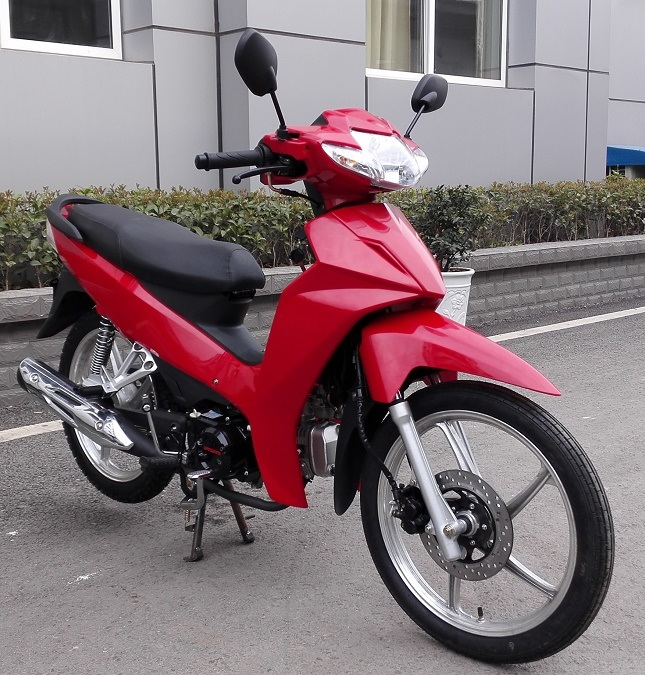 China Motorcycle 100cc 110cc 120cc Yamaha Type