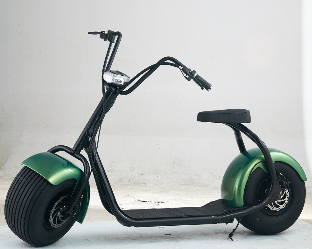 2016 newest citycoco 2 wheeled off road e mobility scooter for Big wheel motor scooter