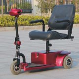 Hot on Sell 3-Wheel Electrric Light Mobility Scooter Dl24250-1 with CE
