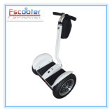 CE 2 Wheels Mobility Toy Kick Scooter