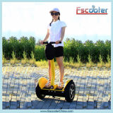Self Balancing Electric Mobility Scooter with CE/FCC/RoHS