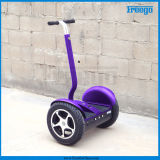 2 Wheel Electric Standing Scooter