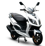 Wholesale Nice LED Headlight 150cc Scooter