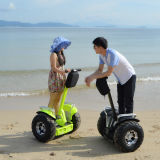 Two-Wheel Self-Balancing Electric Chariot off Road Scooter
