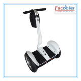 EEC China Electric Moped Scooter