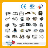Weifang Hualing Power Co., Ltd.