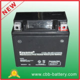 12V5ah Ytx5l-BS-Mf Maintenance-Free Motorcycle Battery