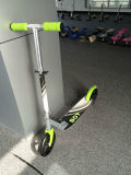 En71 Approved Boys Two Wheels Kick Scooter (LDLS14)