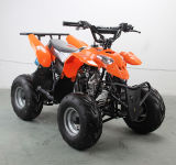 50cc, 70cc, 90cc, 110cc Kids Quad Bike, Mini ATV Quad for Sale Cheap