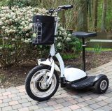 Zappy Electric Tricycle Scooter/Electric Patrol Scooter with 500W 48V/12ah