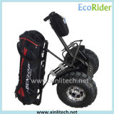 Fast Electric Golf Carts, Electric Chariot Balancing Golf Cart Outdoor Mobility Scooter