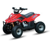 50cc Cheap ATV 4 Stroke Zc-ATV-02