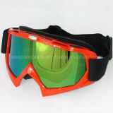 Hot Sale Ski Goggles/Eyewear for Motorcycle Riders (AG006)