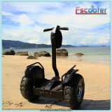 Made in China 2000W Electric Scooter for Adult
