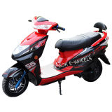 1000W Brushless Motor Electric Motorbike with Disk Brake (EM-013)
