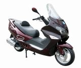 EEC, EPA, DOT 250CC Motorcycle Scooter (250cc-5)