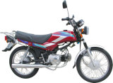 Motorcycle (GW100-8)
