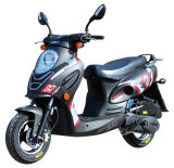 Brand New Classic 	Two Wheel 	49cc	Woman	Road	Gas Motor	Moped (SY50T-6)