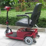 Custom 3 Wheel Electric Scooters for Elderly (DL24250-1)