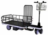 Electric Cargo Motorcycle (DH-PS1-C8 Heavy Duty, Half Fence, Curtis Controller, 800W Motor)