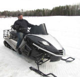 800cc 3 Cylinder Efi Snowmobile/Snow Mobile/Snow Sled/Snow Ski/Snow Scooter with CE