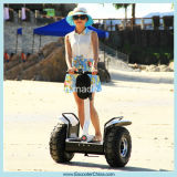 2015 Newest Electric 2 Wheel Scooter/Electric Stand up Scooter/Electric Balance Scooter