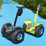 4000W 72V Big Power Two Wheel Electric Mobility Scooter Motor Scooter