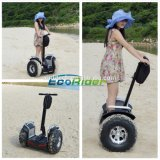 Beach Use Two Wheel Electric Scooter Mobility Scooter for Fun