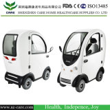 Tanwan Motor Electric Car Scooter