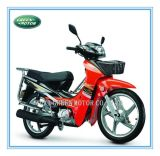 110cc/100cc/70cc/50cc Motorcycle (for Honda Cub III)
