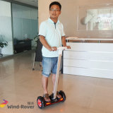 2 Wheel Standing up Electric Mini Scooter
