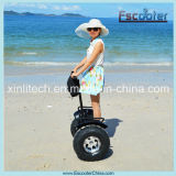 China 2015 The Latest Personal Self Balancing 2 Seat Mobility Scooter Electric Chariot Scooter