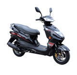 Wholesale China Cheap Mini 50cc Gas Scooter (SY50T-1)
