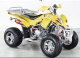 200CC Water Cooled-Model 2007 with EEC
