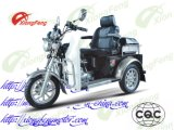 Handicapped Tricycle, Discapacitados Triciclo, Driver Cover Tricycle