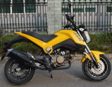 Bsxmoto Bsx110-Ts Excellent and Cheapest Motorcycles Sports Bikes China Manufacturer for OEM New Designed for 2016