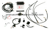 Wire Spare Parts for Tricycle (SP-SP-08)