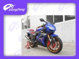 250cc Sport Motrcycle, Strong Racing Motorcycle, 2014 New Design