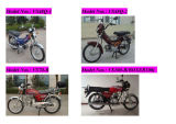 Moped/Motorcycle 48Q 50CC 70CC 100CC 110CC