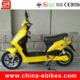 Electric Scooters for Sale (JSE210)