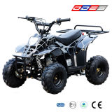 ATV 110CC Quad for Kids (LZ110-3)