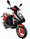 50cc/125cc EEC Approved Gas Motorcycle (DG-GS816)