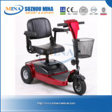 Detachable Mobility Electric Scooter (MINA-8101)