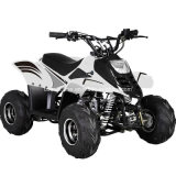 Sports ATV Quad 110cc for Kids