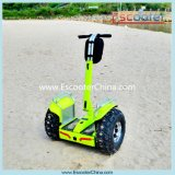 2016 Best Selling and New Design China Electric Scooter, 2 Wheels Professional Mobility Scooter for Adults