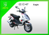 China New 50cc Gas Scooter (Eagle-50)