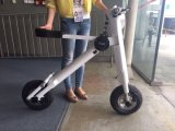 Electric Scooter with Pedals Approved by CE and FCC