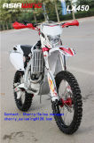 450cc Luxury Version Motorcycle Lx450 with EEC