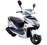 Mini Gasoline 50cc	Racing	Woman	Sport	Street 	Moped for Adult