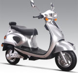 Electric Scooter (SL-LY)